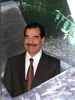 20050721-1.jpg
